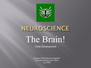 Neuroscience - Instructional Resources