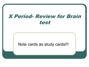 X Period- Review for Brain test