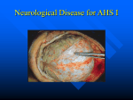 Neurological Diseases ppt