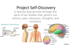 Project Self-Discovery