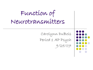 Function of Neurotransmitters