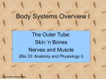 Body Systems Overview - Faculty Website Directory