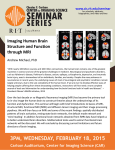 Imaging Human Brain Structure and Function through MRI