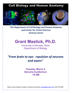 "Grant Mastick, Ph.D. ""From brain to eye:  repulsion of neurons"