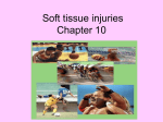Soft tissue injuries Chapter 10