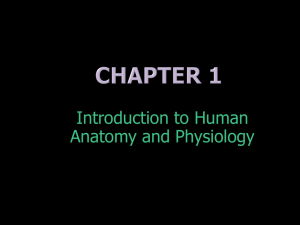 Chapter 1 (Intro) ppt