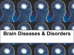 Brain Diseases & Disorders