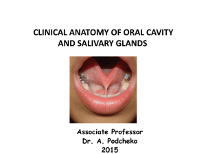 Clinical Anatomy of Oral Cavity