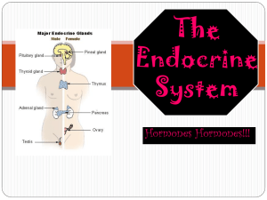 The endocrine system is founded on hormones and glands.