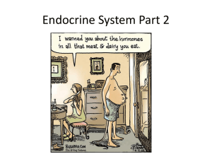Endocrine Part 2 Powerpoint