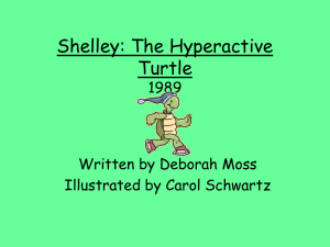 Shelley: The Hyperactive Turtle