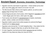 Egyptian Economy - Colts Neck Township Schools