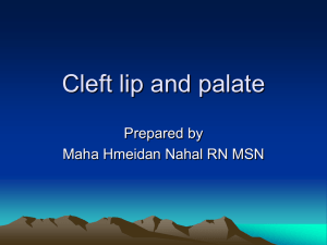 Cleft lip and palate - IMET2000-Pal