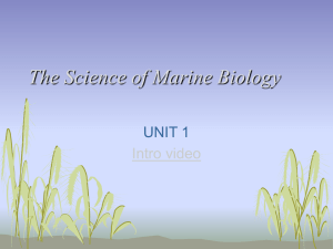 HISTORY OF MARINE BIOLOGY