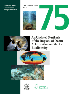75 An Updated Synthesis of the Impacts of Ocean Acidification on Marine