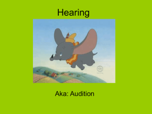 Hearing - AP Psychology