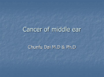 Cancer of middle ear