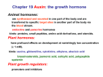 Chapter 19 Auxin: the growth hormone Animal hormones