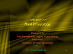 Basic Principle in Plant Physiology