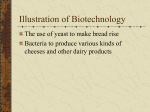 Illustration of Biotechnology - R