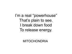"I`m a real ""powerhouse"" That`s plain to see. I break down food To"