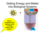 Getting Energy and Matter into Biological Systems