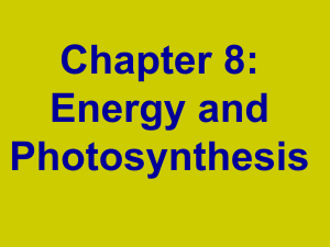 Photosynthesis ppt Honors
