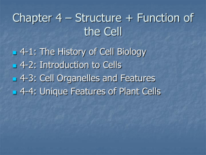 Chapter 4 – Structure + Function of the Cell