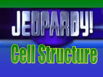 Cell Structure Jepordy