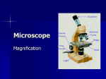 Microscope magnification ppt