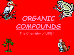 carbs organic compounds