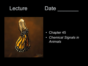 Lecture #20 Date ______