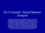 Social Networks in Organizations: Antecedents and