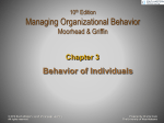 organizational behavior challenges for todays managers essay