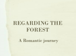 REGARDING THE FOREST