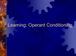 Learning: Operant Conditioning