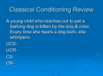 Classical Conditioning Review