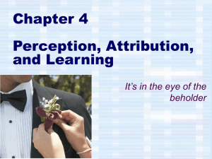 Chapter 4 Perception, Attribution, and Learning