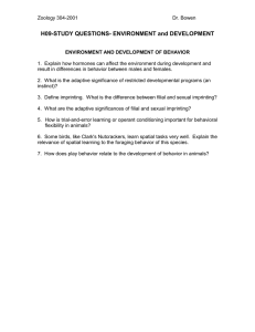 H09-STUDY QUESTIONS- ENVIRONMENT and DEVELOPMENT