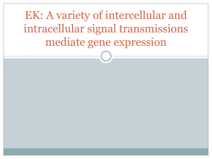 EK: A variety of intercellular and intracellular signal