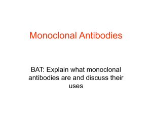 Monoclonal Antibodies - The Grange School Blogs