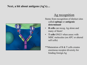 Next, a bit about antigens (Ag`s)…