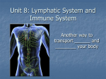 Unit 7: Lymphatic System and Immune System