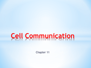 Cell Communication PPT