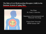 Aging Study in mice