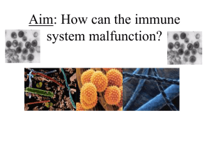 How can your immune system malfunction?