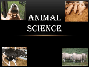 What is Animal Science - Riverside High School