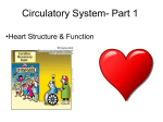 Circulatory System - School District 67 Okanagan Skaha