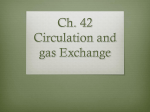 Ch. 42 Circulation and gas Exchange