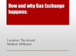 How and why Gas Exchange happens: